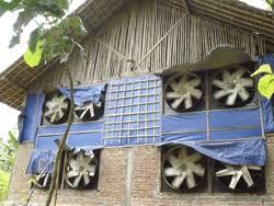 Termometer Kandang Ayam selamat datang di www aneka farm