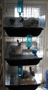 Stackable Rabbit Hutches How To Make Urine Guard Actually Work Cages Hutches And