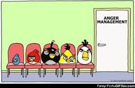 Angry Birds Memes - funny angry birds memes best bird 2018
