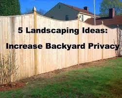 Privacy Ideas For Backyard Decor Of Landscaping Ideas For Backyard Privacy 5 Landscaping