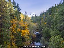 fall color upper sacramento river mt shasta