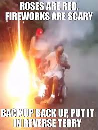Terry Meme - memes roses are red firework are scary back up back up put it in