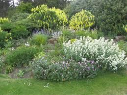 Barnhill Rock Garden Barnhill Rock Garden Broughty Ferry News