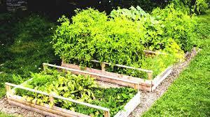 Herb Garden Layout Ideas by Raised Garden Bed Ideas Herb Plans Planter Designs X Gardenabc Com