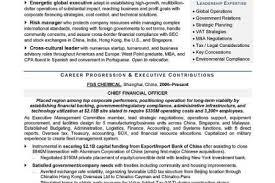 Sample Resume Cfo by Sample Cfo Resume Sample 476x615 Sample Cfo Resume Sample Top