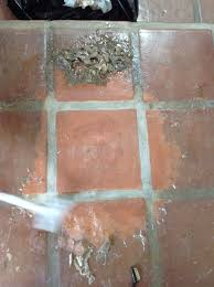 california tile refinishers mexican paver restoration