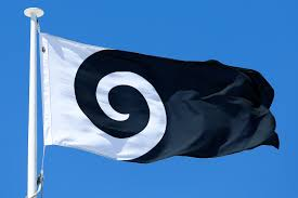 Nee Zealand Flag New Zealand Flag Referendum Winner Confirmed From Shortlist Of
