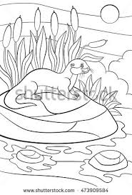 coloring pages cute otter stands stock vector 473909584