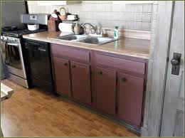 Kitchen Sink Cabinet 60 Inch Kitchen Sink Base Cabinet Tlsplant Com