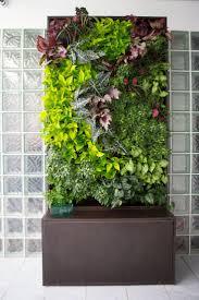 interior garden wall livingroom vertical herb garden indoor living wall systems