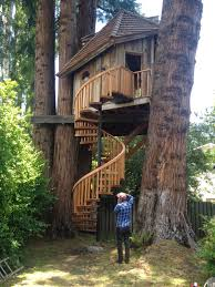 about last weekend a treehouse in marin