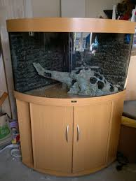 fish tank fish tank free to good home aquarium 190l for sale