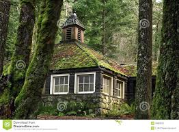 mossy country stone cottage in the woods royalty free stock