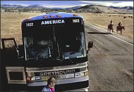 Wyoming travel buses images The greater yellowstone ecosystem raymond gehman photography jpg