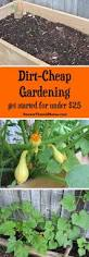 How To Store Garden Vegetables For Winter 23042 Best Hometalk Gardening Images On Pinterest Gardening
