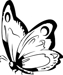 free art butterfly coloring page wecoloringpage