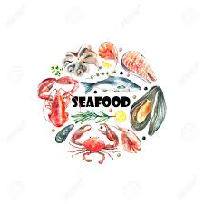 watercolor frame of seafood hand draw isolated illustration on