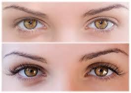 Professional Eyelash Extension Eyelash Extension