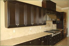 Plain Kitchen Cabinet Doors by Plywood Elite Plus Plain Door Chestnut Kitchen Cabinets Knobs