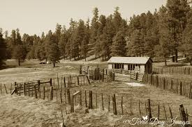 terrie day images photo keywords payson old ranch farms