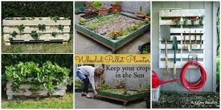 Pallet Gardening Ideas Pallet Gardening How To Create Pallet Garden