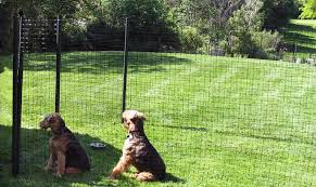 temporary fencing for dogs garden
