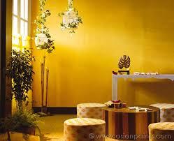 royale play textile for living room interiors kora grass base