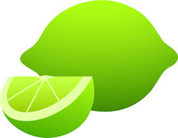 lime lime cliparts cliparts zone