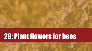 native plants for bees 29 plant flowers for pollinators attract bees to your garden by