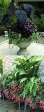 16 colorful shade garden pots and plant lists shade garden