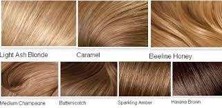 light brown hair color ideas straight light brown hair color ideas medium hair styles ideas 25387