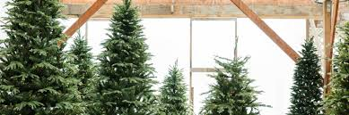 lifelike trees that live up to their name mulhall s