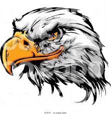 golden eagle clipart angry pencil and in color golden eagle
