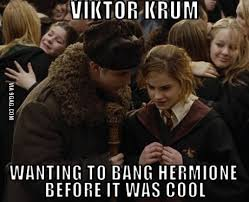 Horny Harry Meme - horny harry potter and hermione granger meme compi justpost