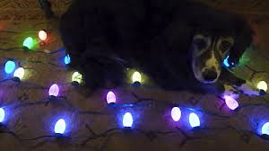 where to buy cheap christmas lights msgeq7 hacked ge christmas lights arduino color organ youtube
