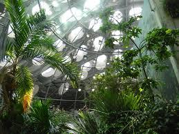 indoor garden 17 best 1000 ideas about indoor mini garden on