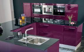 meuble cuisine aubergine couleur peinture cuisine aubergine idée de modèle de cuisine