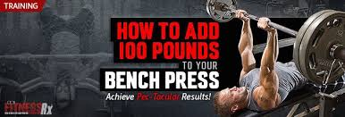Inzer Bench Shirt Sizing Chart How To Add 100 Pounds To Your Bench Press Fitnessrx For Men Part 3