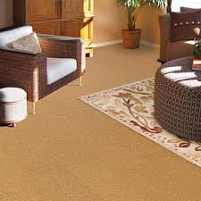 cork flooring carpets in dalton
