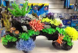 aqua warrnambool aquarium