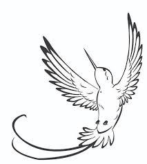 best 25 hummingbird drawing ideas on pinterest cool simple