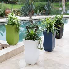 Planters U0026 Vases Shopping Online For Home Decor Decor Online by Best 25 Tall Planters Ideas On Pinterest Outdoor Potted Plants