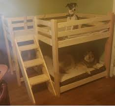 dog bunk beds b97 in perfect bedroom decoration diy with dog bunk