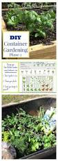 best 25 backyard vegetable gardens ideas on pinterest planting