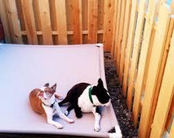 Pvc Pipe Dog Bed Pvc Pipe Etsy