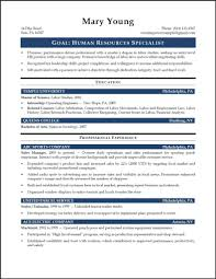 Sample Resume Objectives Human Resources by Sample Resume For Hr Recruiter Position Resume For Your Job