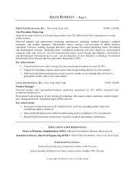 sample resume of ceo resume bio examples resume bio examples