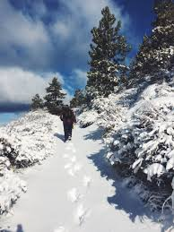 February Will Go Out Like A Lion Colorado Daily Snow Report Three Incredible Snowy Days In Tahoe South Vagabond3 World