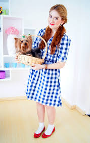 dorothy wizard of oz halloween costumes halloween 15 easy homemade halloween costume ideas beauty walks