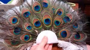 peacock feather fan how to make a peacock feather fan bouquet